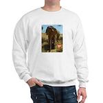 Gypsy the Asian Elephant Sweatshirt