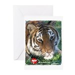 Mookie the Tiger Greeting Cards (Pk of 10)