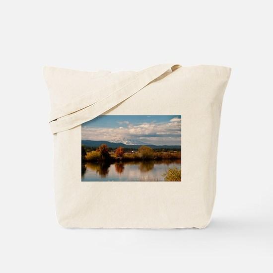Unique Mt. shasta Tote Bag