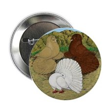 "Beautiful Pigeons 2.25"" Button (10 pack)"