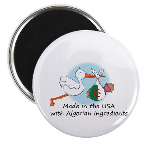 Stork Baby Algeria USA Magnet