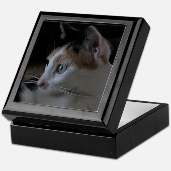 Cute Calico Cat Keepsake Box