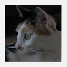 Cute Calico Cat Tile Coaster