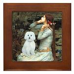 Ophelia (#1) - Maltese (B) Framed Tile
