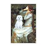 Ophelia (#1) - Maltese (B) Mini Poster Print