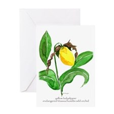 yellow ladyslipper flower Greeting Cards