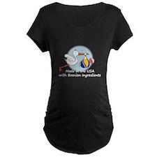 Stork Baby Bosnia USA T-Shirt