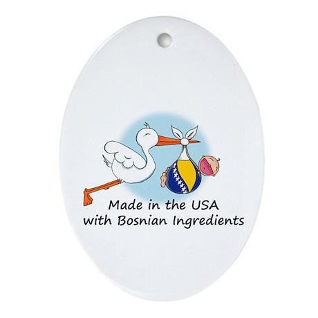 Stork Baby Bosnia USA Ornament (Oval)