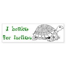 Turtles - Bumper Sticker