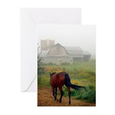 Unique Horse Greeting Cards (Pk of 20)