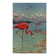Flamingo Art Postcards (Package of 8)