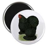 "Cochin: Black Hen 2.25"" Magnet (10 pack)"