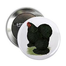 "Cochin: Black Hen 2.25"" Button"