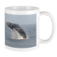 Mug-Whale (Humpback)