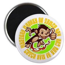 MYSTERY MONKEY OF TAMPA BAY Magnet