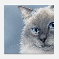 Ragdoll Cats 2 Tile Coaster
