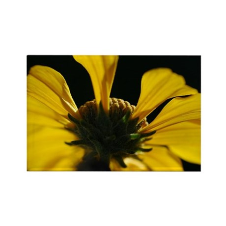 Yellow Wildflower Rectangle Magnet