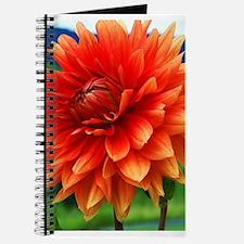 Orange Dalia Journal