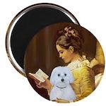 Reading / Maltese Magnet