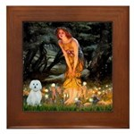 MidEve / Maltese Framed Tile