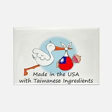 Stork Baby Taiwan USA Rectangle Magnet