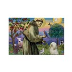St. Francis & Tibetan Terrier Rectangle Magnet