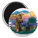 St Francis #2/ Belgian Shep 2.25