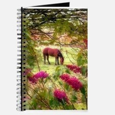 Horse in the Summer Journal