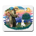 St Francis #2/ Bull T (#4) Mousepad