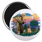 St Francis #2/ Shar Pei (#2) Magnet
