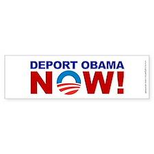 Deport Obama NOW, Bumper Sticker