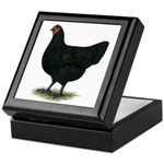 Jersey Giant: Black Hen Keepsake Box