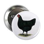 "Jersey Giant: Black Hen 2.25"" Button (100 pac"