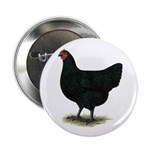 """Jersey Giant: Black Hen 2.25"""" Button (10 pack"""