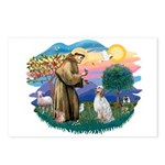 St Francis #2/ English Set. Postcards (Package of