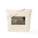 Boomershoot 2010 Tote Bag