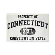 Connecticut Rectangle Magnet