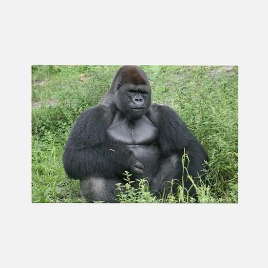 Rectangle Magnet-Gorilla