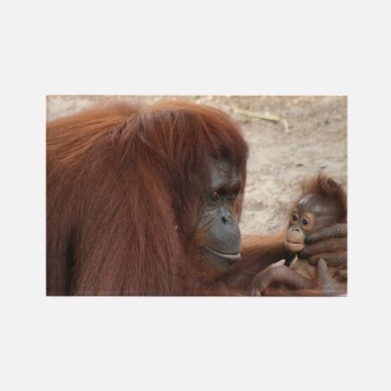 Rectangle Magnet-Orangutan
