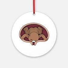 Agorababia -DS Ornament (Round)