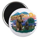 St Francis #2/ Bouvier Magnet
