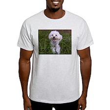 Cute Dog park T-Shirt