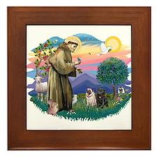 St Francis #2/ Pugs (blk&f) Framed Tile