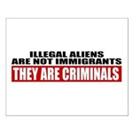 Illegal Aliens Are Not Immigr Small Poster