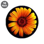 """Yellow Daisy Fine Art 3.5"""" Button (10 pack)"""