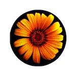 """Yellow Daisy Fine Art 3.5"""" Button"""