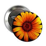 """Yellow Daisy Fine Art 2.25"""" Button (100 pack)"""