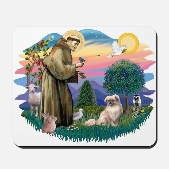 St Francis #2/ Tibetan Span #4 Mousepad