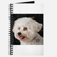 MARCO BICHON ART JOURNAL