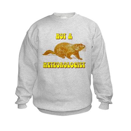 Not A Meteorologist Groundhog Kids Sweatshirt